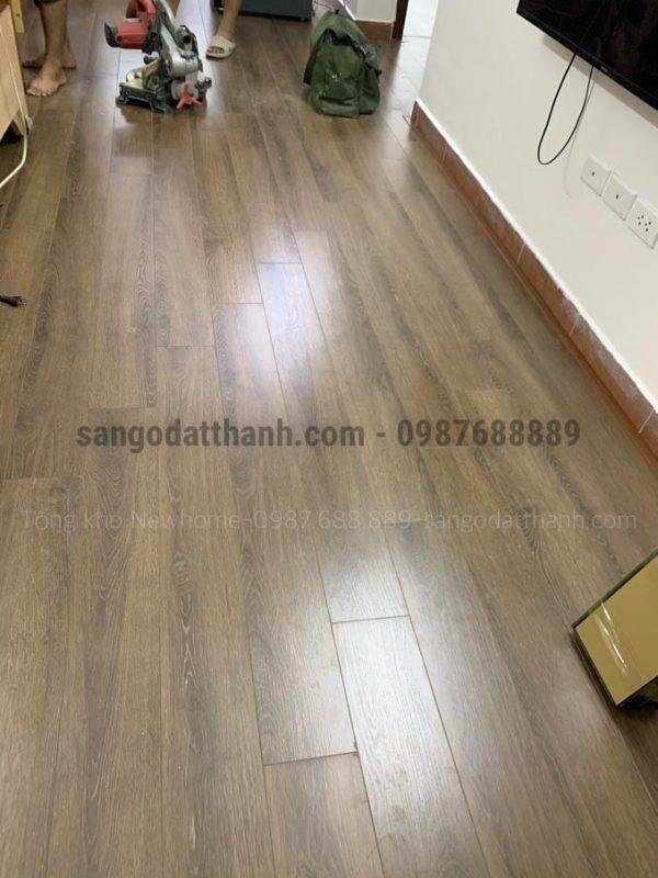 Sàn gỗ công nghiệp Wilson 8mm w555 12